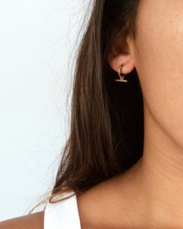 Line it up earrings